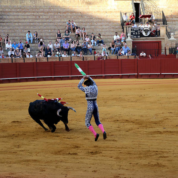 Photograph - Bullfighting 36 by Andrew Fare