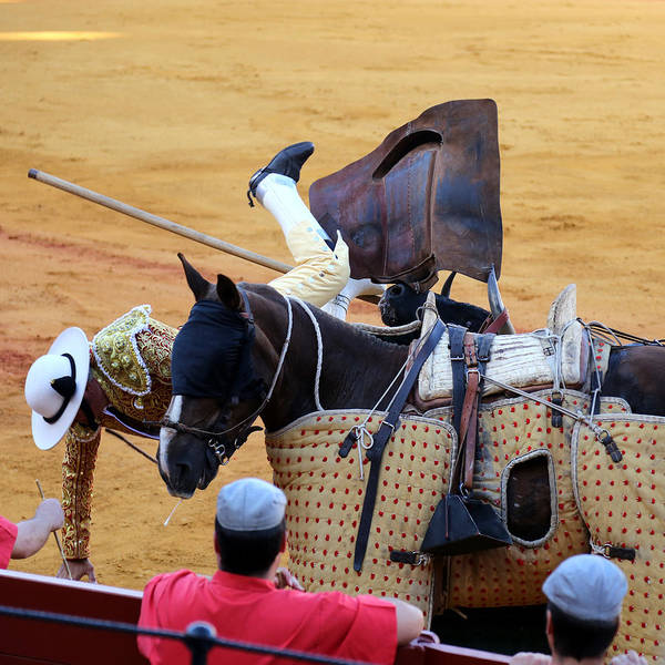 Photograph - Bullfighting 8 by Andrew Fare