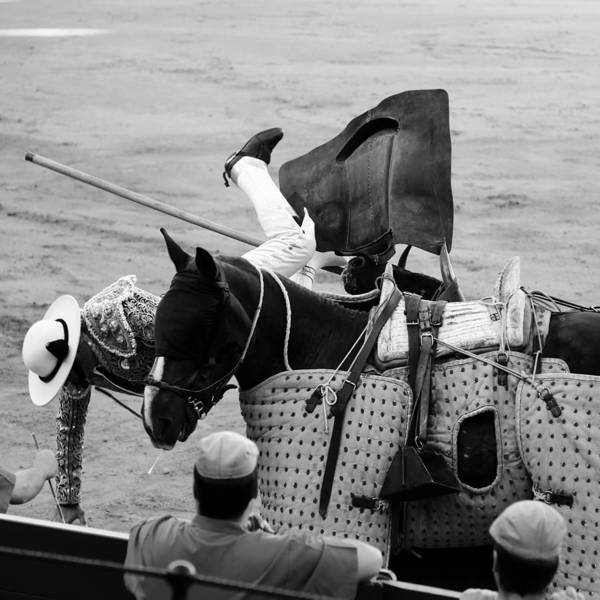 Photograph - Bullfighting 8b by Andrew Fare