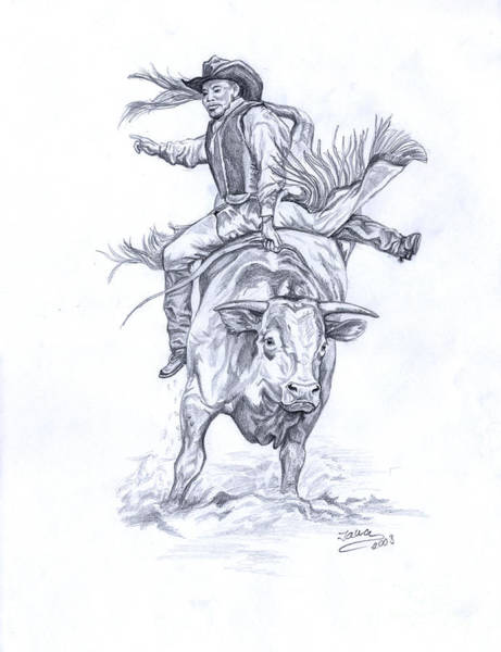 Dust Drawing - Bullrider by Jana Goode