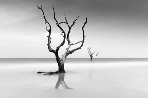 Wall Art - Photograph - Boneyard Beach Xv by Ivo Kerssemakers