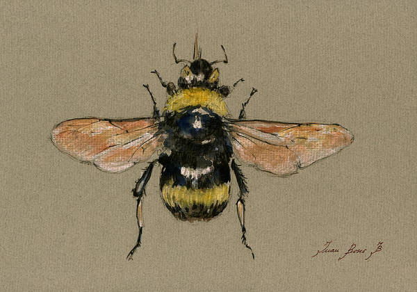 Wall Art - Painting - Bumble Bee Art Wall by Juan  Bosco