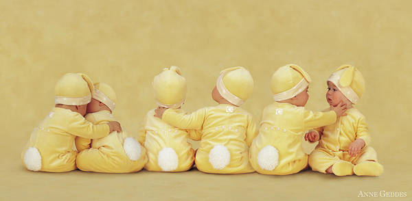 Wall Art - Photograph - Bunnies by Anne Geddes