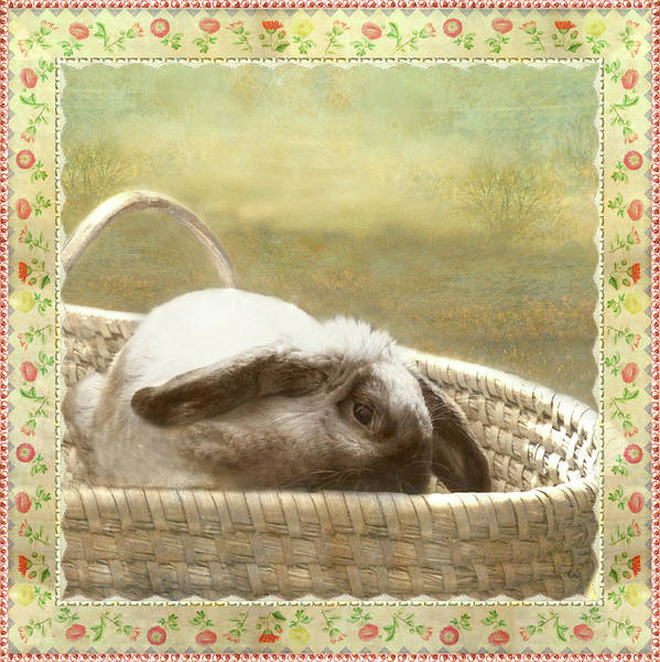 Photograph - Bunny In Easter Basket by Adele Aron Greenspun