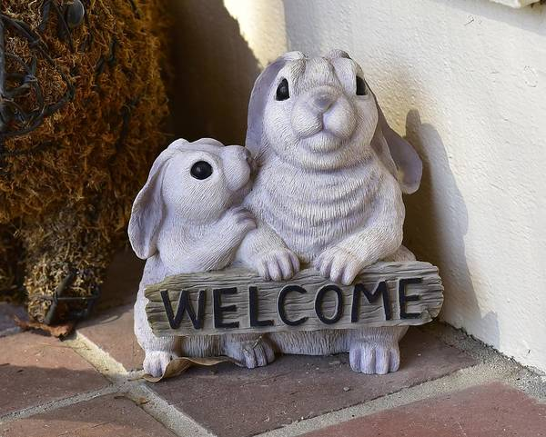 Greeters Photograph - Bunny Welcome by Linda Brody