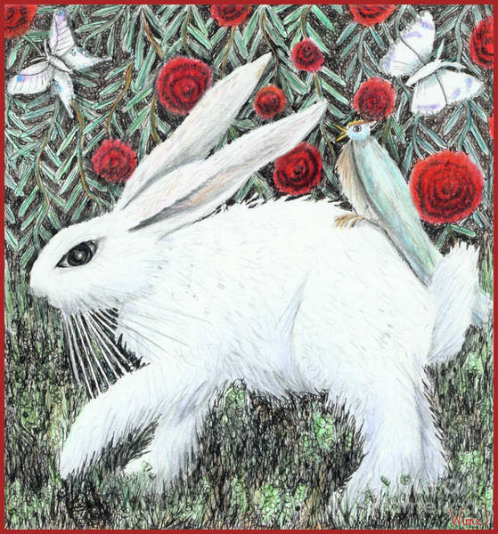Drawing - Bunny With Hitchhiker by Lise Winne