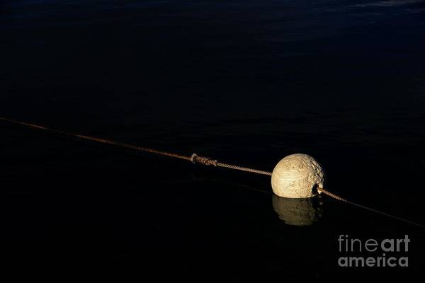 Photograph - Buoy At Night by Stephen Mitchell