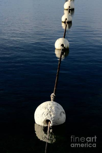 Photograph - Buoy Descending by Stephen Mitchell