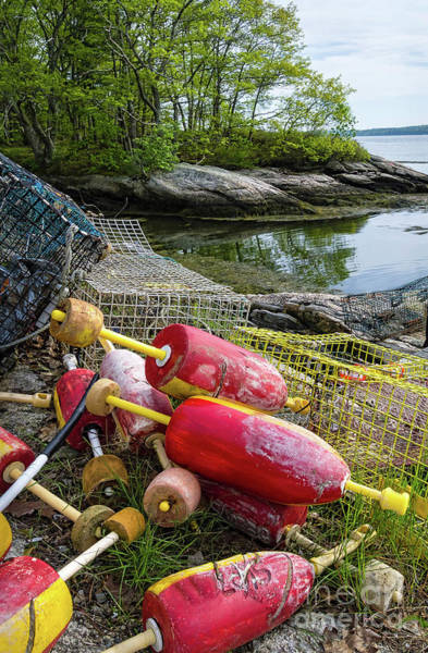 Photograph - Buoys And Traps On Shore, Trevett Village, Boothbay, Me  -70619 by John Bald