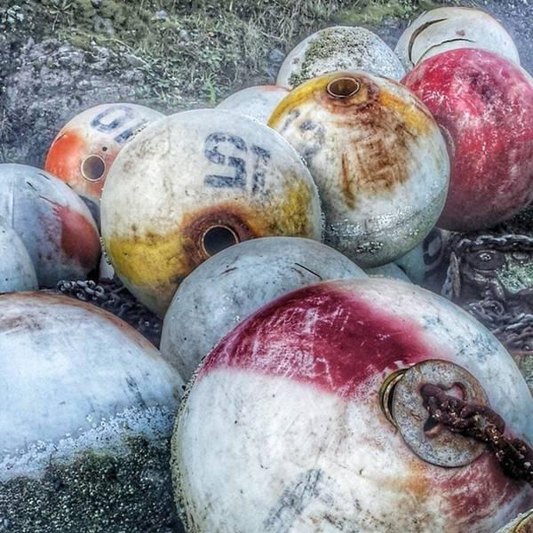 Photograph - #buoys #muchlatergram by Tricia Elliott