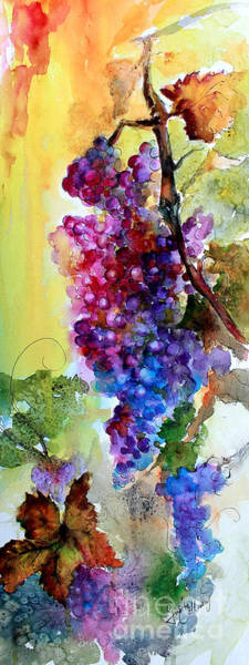 Painting - Wine Grapes Burgundy In Sunlight by Ginette Callaway