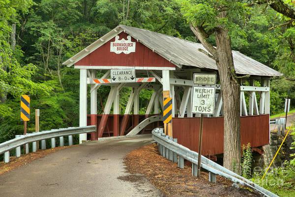 Garrett County Wall Art - Photograph - Burkholder Bridge In The Woods by Adam Jewell