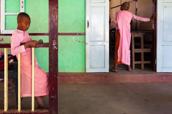 Photograph - Burmese Mood by Marji Lang