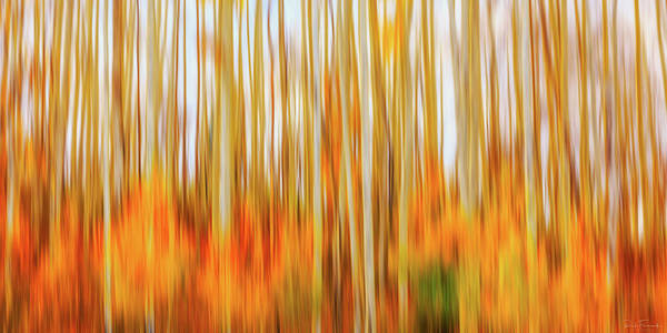 Photograph - Burn In Me by Rick Furmanek