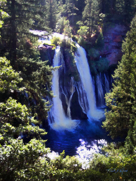 Photograph - Burney Falls by Frank Wilson