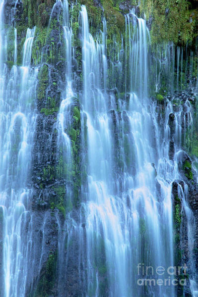 Photograph - Burney Falls Mist Mcarthur Burney Sp California  by Dave Welling