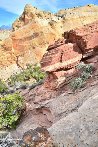 Photograph - Burr Trail Incline by Ray Mathis