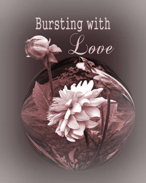 Wall Art - Photograph - Bursting With Love by Myrna Migala