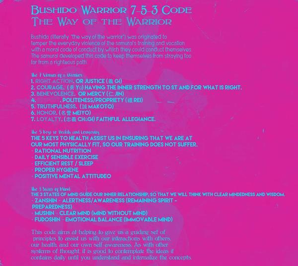 Bushido Painting - Bushido Warrior 7-5-3 Code 1 by Celestial Images