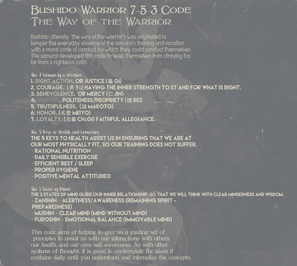 Bushido Painting - Bushido Warrior 7-5-3 Code 10d by Celestial Images