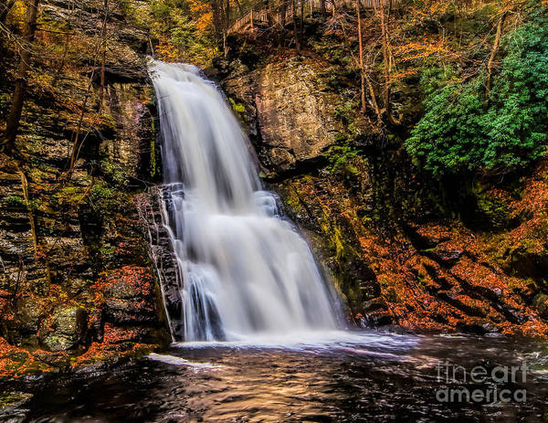Photograph - Bushkill Falls by Nick Zelinsky