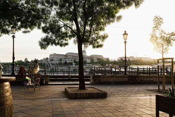 Photograph - Buskin On The Danube by Sharon Popek