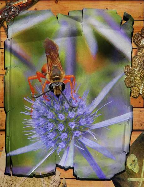 Photograph - Busy Bee On Purle Flower. by Rusty R Smith