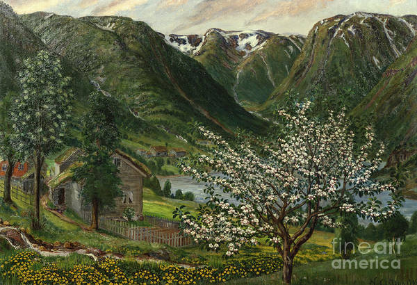 Nikolai Astrup Painting - Buttercups And Appel Trees by O Vaering