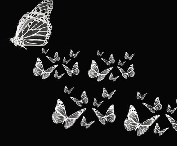 Photograph - Butterflies by Lourry Legarde
