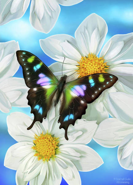 Song Wall Art - Painting - Butterfly 2 by JQ Licensing