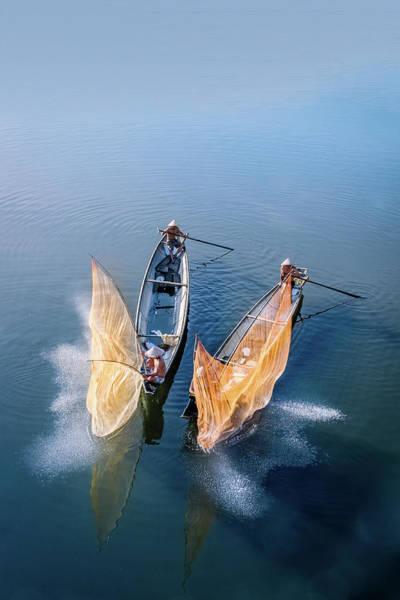 Photograph - Butterfly-2 by Okan YILMAZ