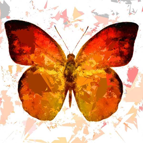 Painting - Butterfly 315 by Movie Poster Prints