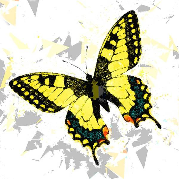 Painting - Butterfly 326 by Movie Poster Prints