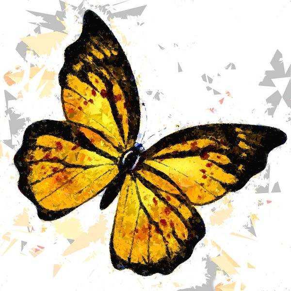 Painting - Butterfly 328 by Movie Poster Prints