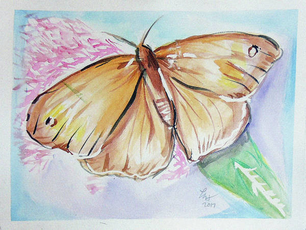 Painting - Butterfly 5 by Loretta Nash