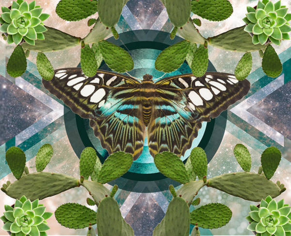 Kaleidoscope Wall Art - Digital Art - Butterfly Cactus Kaleidoscope by Lori Menna