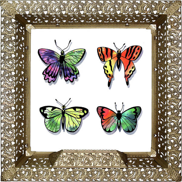 Collectible Painting - Butterfly Collection II Framed by Irina Sztukowski