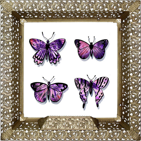 Painting - Butterfly Collection IIi Framed by Irina Sztukowski