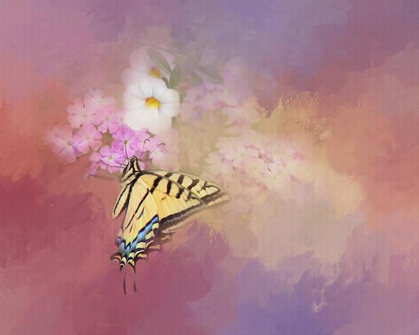 Photograph - Butterfly Dreams by Theresa Tahara