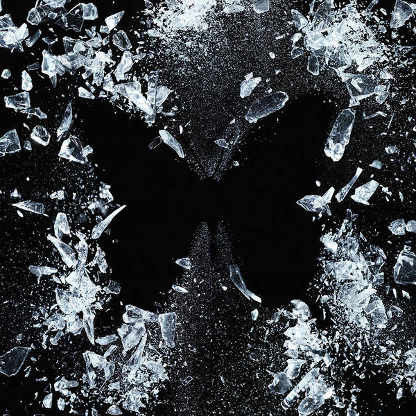 Wall Art - Photograph - Butterfly Effect by Floriana Barbu