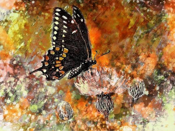 State Of Being Painting - Butterfly Energy by Barbara Chichester