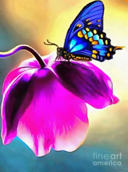 Painting - Butterfly Floral by Catherine Lott