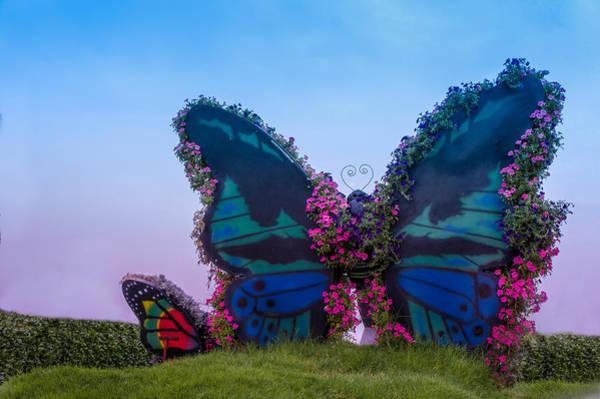Wall Art - Photograph - Butterfly Garden, Dubai by Art Spectrum