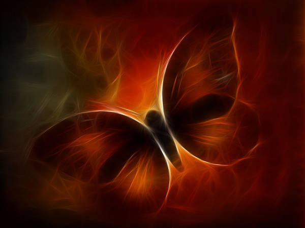Orange Butterfly Digital Art - Butterfly Kisses by Holly Ethan