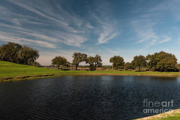 Photograph - Butterfly Lake At Middleton Place by Dale Powell