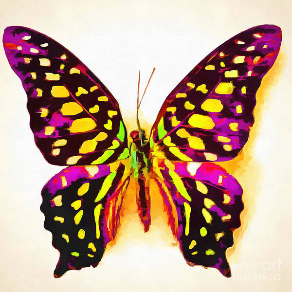 Butter Painting - Butterfly Painting by Edward Fielding