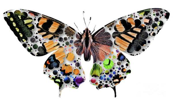 Haring Digital Art - Butterfly Pop Art by Mary Bassett