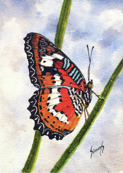 Painting - Butterfly - 171012 by Sam Sidders