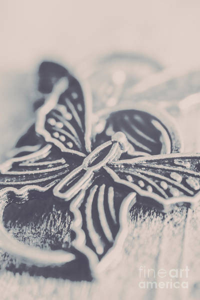 Up Photograph - Butterfly Shaped Charm by Jorgo Photography - Wall Art Gallery