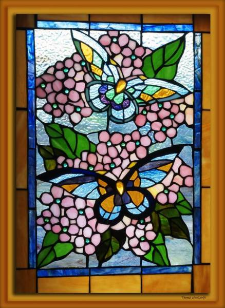 Wall Art - Photograph - Butterfly Stained Glass Window by Thomas Woolworth